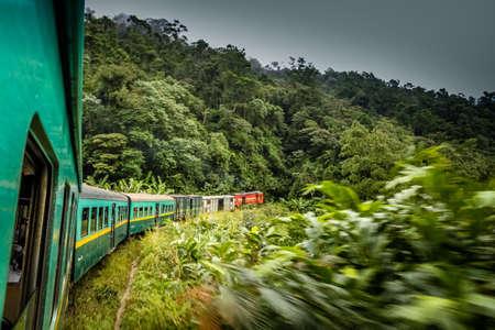 high plateau: Train going through beautiful lush rainforest between the high plateau city of Fianarantsoa and the port-city of Manakara Stock Photo