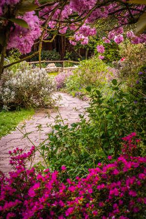 Steinigen Weg in einem öffentlichen Park (Rookery) in Streatham in London, Frühjahr Standard-Bild