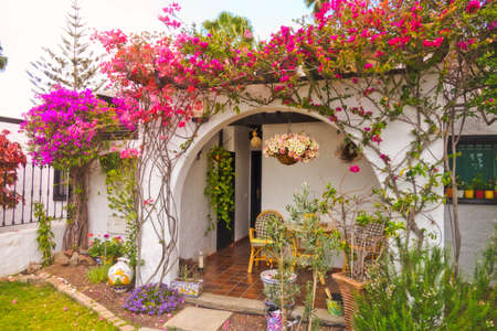 canarian: Beautiful flowers at the entrance to one of the homes in Maspalomas in Gran Canaria Canary Islands
