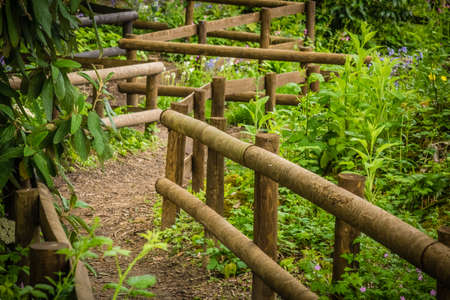 rural countryside: Wooden pathway in a rural countryside Kent England Stock Photo