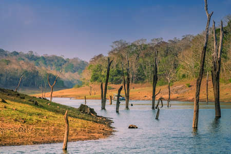 Touristic boat on the lake in the Periyar National Park India Imagens