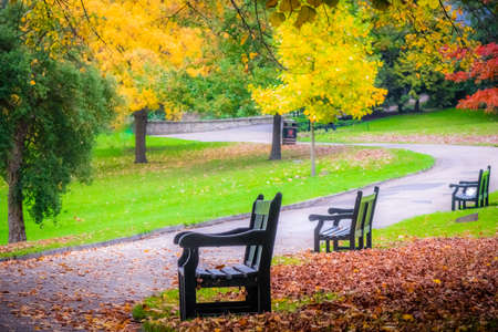 color: Three empty benches in a park in autumn Stock Photo
