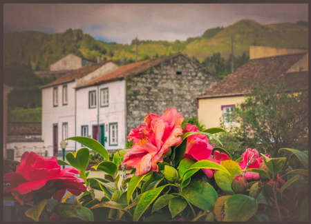 lies: Traditional homes in Furnas town, which lies in the volacano crater, Sao Miguel, Azores, Portugal