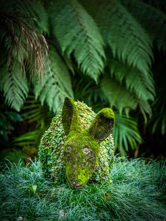 terra: Moss covered rabbit sculpture in The Terra Nostra Garden in Furnas,  on Sao Miguel island, Azores, Portugal Stock Photo