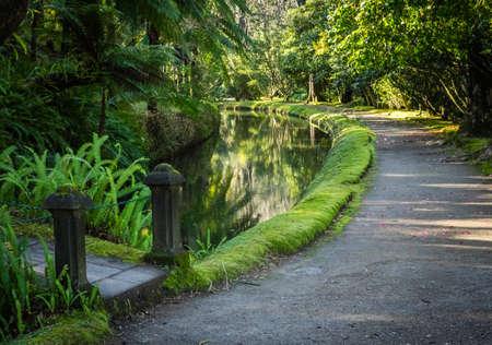 terra: Walking path in The Terra Nostra Garden in Furnas,  on Sao Miguel island, Azores, Portugal