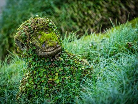 terra: Monkey moss covered sculpture in The Terra Nostra Garden in Furnas,  on Sao Miguel island, Azores, Portugal