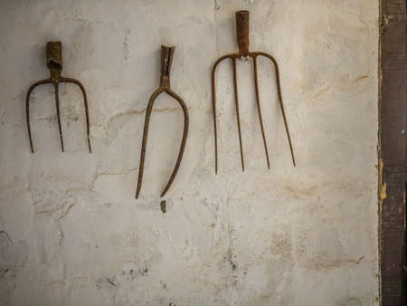 barnyard: Rustic Pitchforks hanging on the wall of a barnyard on a farm in Fuerteventura, Spain Stock Photo