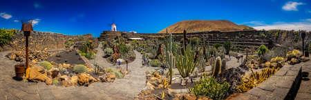 manrique: Panoramic view of the cactus garden ( Jardin de cactus) designed by Cesar Manrique, Lanzarote, Canary Islands, Spain