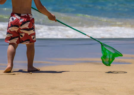 Little boy holding small green fishing net going towards the sea