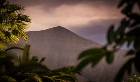 palmtrees: Peak of a  volcano with colorful defocused palmtrees in the foreground, southern Lanzarote, Canary Islands, Spain