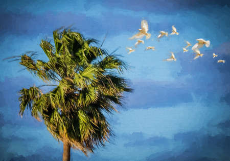 impression: Painting like impression of a palmtree and white birds flying in the air