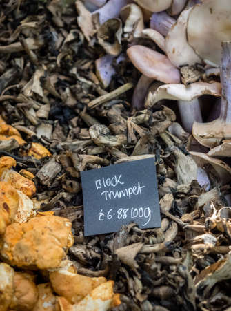 puckered: Fresh black trumpet mushrooms on sale in the farmers Borough Market in London, England, Uk