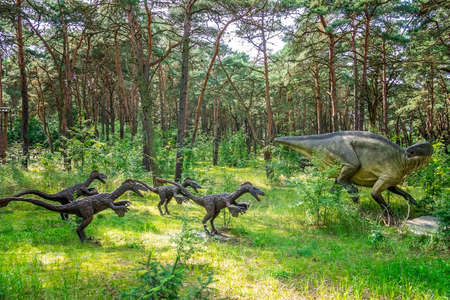 Solec Kujawski, Poland - August 2017 : Life sized group of Raptor dinosaurs statues in a forest