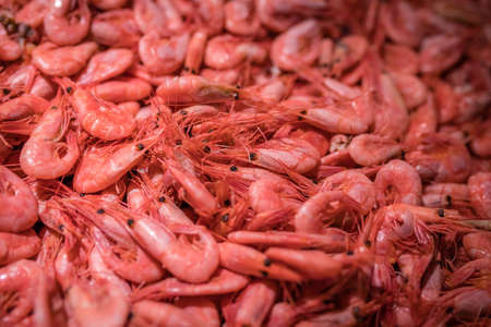 Fresh prawns in cold display on the indoor fish market in Bergen, Norway