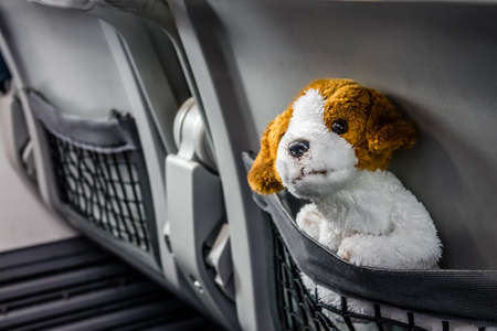 Little cute soft toy dog mascot traveling on a plane in a seat net