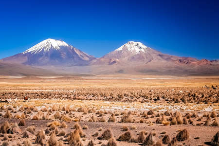 Enormous volcano Nevado Sajama and Parinacota volcanoes located in National Parks in Chile and Bolivia Stock Photo