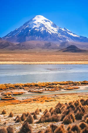 Enormous snowcapped Nevado Sajama volcano in the National Park, Bolivia Stock Photo