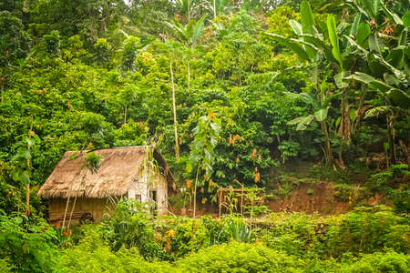 Small wooden bamboo hut in the jungle on the Indonesian island of Flores Nusa Teggara Stock Photo