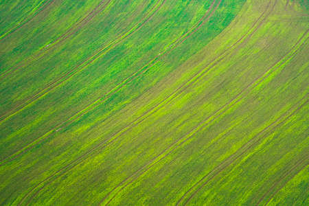 Aerial view of a green empty field in winter among the rural landscape of Lower Silesia, Poland. Can be used as a background, backdrop or overlay.