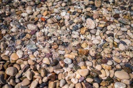 Colorful stones in the sea water on the beach in summer Stock fotó