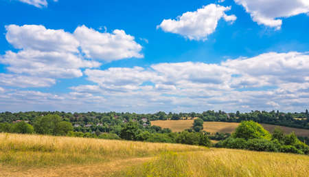 Hills, grassland and trees near Banstead woods in Surrey, England Stock Photo