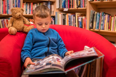 Cute little Caucasian boy sitting in a chair with his favorite soft teddy bear toy and browsing through book in a small local bookstore Banco de Imagens - 122339432