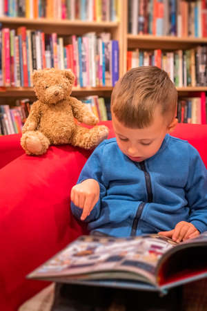 Cute little Caucasian boy sitting in a chair with his favorite soft teddy bear toy and browsing through book in a small local bookstore