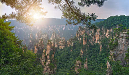 Panoramic view of the stone pillars of Tianzi mountains in Zhangjiajie National park which is a famous tourist attraction, Wulingyuan, Hunan Province, China