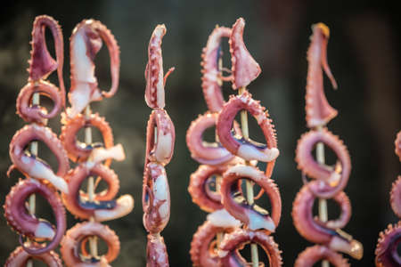 Baby octopus meat on wooden sticks, ready to be grilled on the street in the Muslim Quarter, Xian town, China