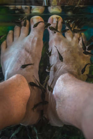 Man holding feet in a water tank filled with rufa garra fishes in chinese spa pedicure skin care treatment, Fenghuang, China Stockfoto
