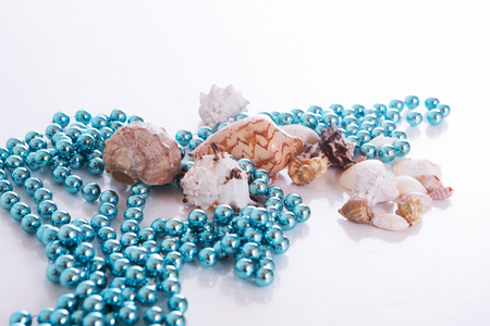 shells and blue beads on a white background. Isolated photo Stock Photo