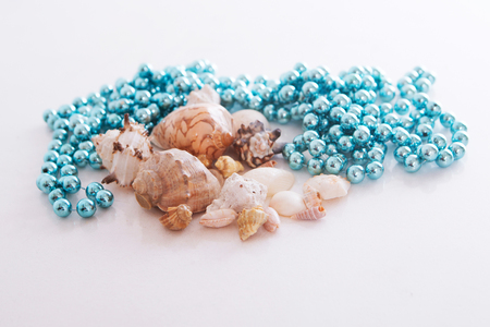 shells and blue beads on a white background. Isolated photo Imagens