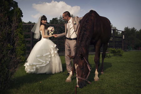 the bride and groom stroking a brown horse