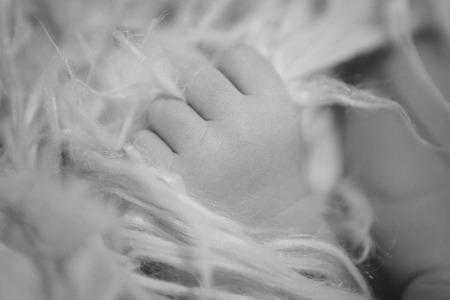 hand's of newborn baby close up on Фото со стока