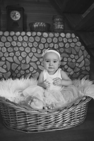 girl in a dress sitting in a basket on a white firewood. the concept of holiday, fun, home comfort Reklamní fotografie