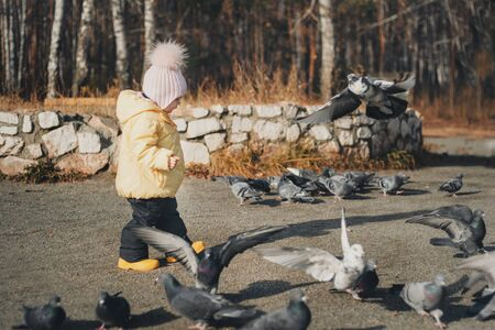 a little child chasing pigeons. Girl feeding birds. Concept of childhood, street games Stok Fotoğraf - 134408083