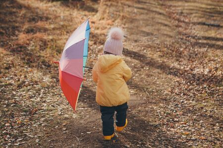a small child in a warm suit and with a colorful umbrella walks in the woods. autumn park. The concept of childrens fashion, accessories, outdoor walks Stok Fotoğraf