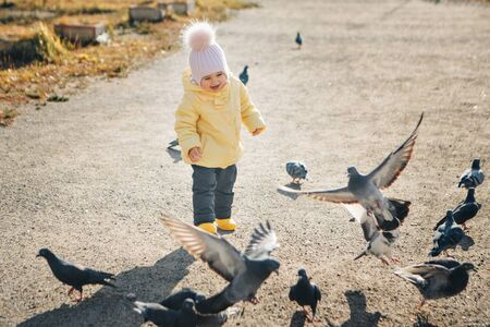 a little child chasing pigeons. Girl feeding birds. Concept of childhood, street games