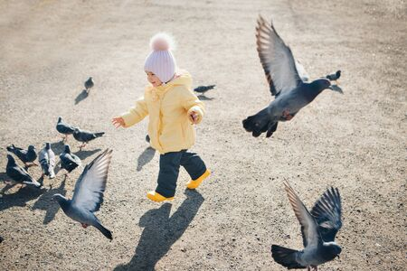 a little child chasing pigeons. Girl feeding birds. Concept of childhood, street games Stok Fotoğraf - 134409096