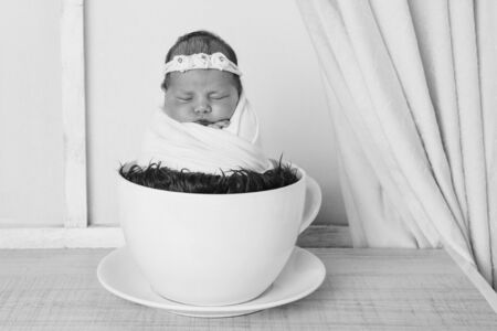 newborn baby in a large tea Cup.