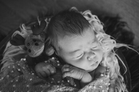 newborn baby sleeping with doll. Imitation of a baby in the womb. Portrait of newborn. with moose. Health care concept, parenthood, childrens Day, medicine, IVF Stok Fotoğraf