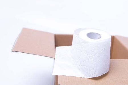 toilet paper rolls. everyday objects in copy space. shortage of raw materials. a popular product on market. delivery of goods for house