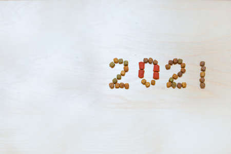 food for cats and dogs and the new year. Dry food label. Pet treats in 2021 Banco de Imagens