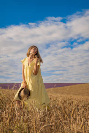 Harvest: ripe wheat grows in the field. The golden grain and the girl are walking through the field. the hot sun strokes the skin
