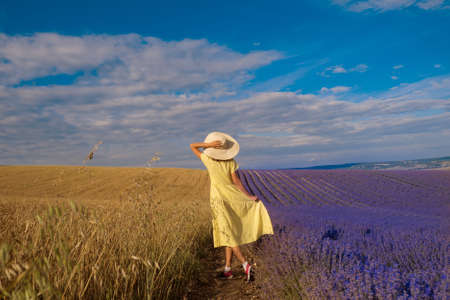 meeting of two worlds: a girl in a yellow dress between a wheat and lavender field