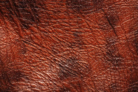 Closeup of seamless luxury brown  leather texture photo