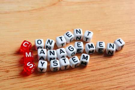 CMS Content Management System written on dices on wooden background