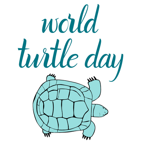 Inscription World Turtle Day and turtle