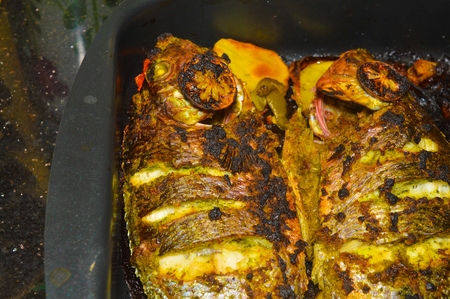 homemade grilled tilapia fish Stock Photo