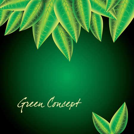 Spring green leaves background - Illustration Vector